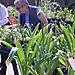 Woodley_farmers_market_1
