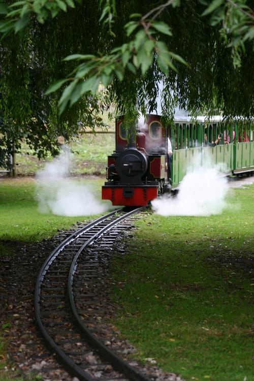 Beale_park_train