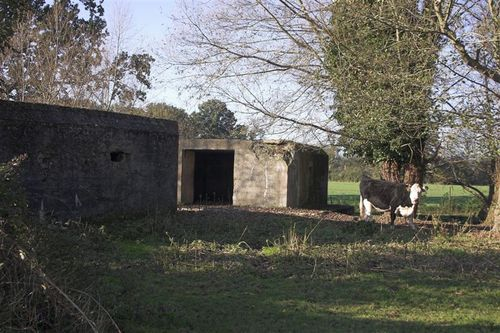 Cattle_shed_pillbox