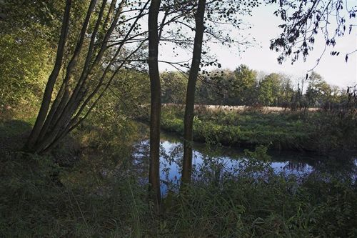 River_pang