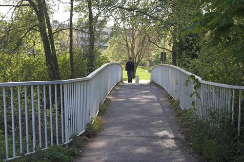 Whiteknights_friends_bridge