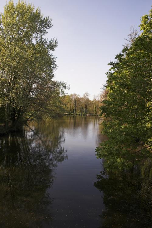 Whiteknights_lake